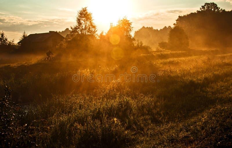 Download Mattina nebbiosa immagine stock. Immagine di bici, bello - 56889639