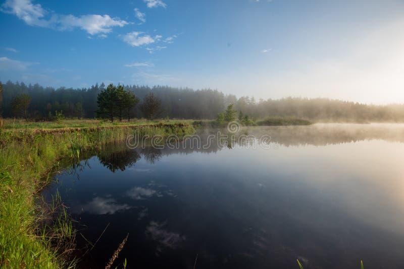 Mattina nebbiosa dal lago fotografia stock