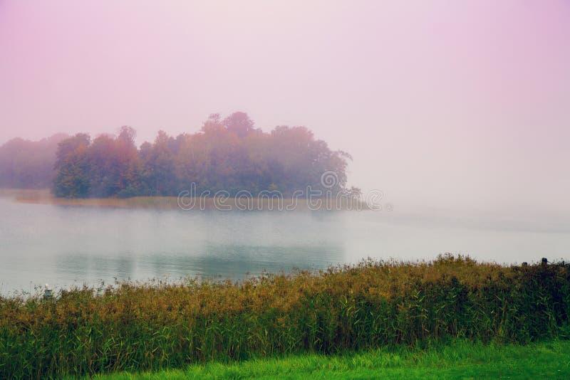 Mattina nebbiosa Foschia sopra il lago fotografia stock libera da diritti