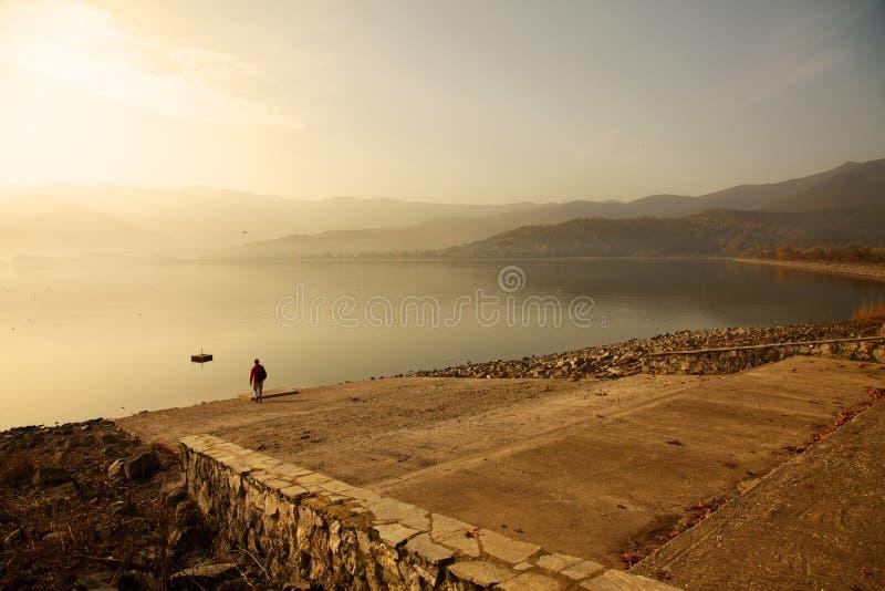 Mattina nebbiosa nel lago fotografia stock libera da diritti