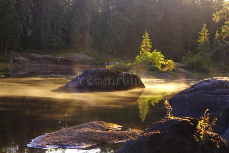 Mattina nebbiosa nel lago immagini stock