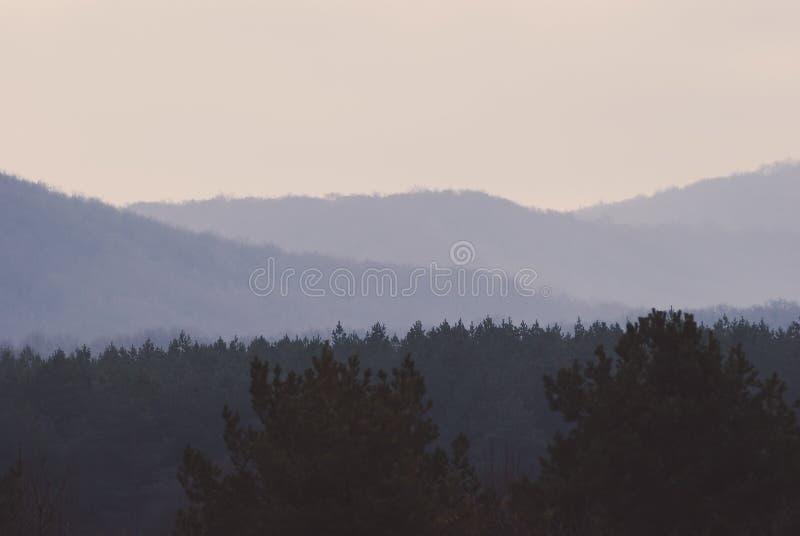 Mattina nebbiosa nelle montagne immagini stock