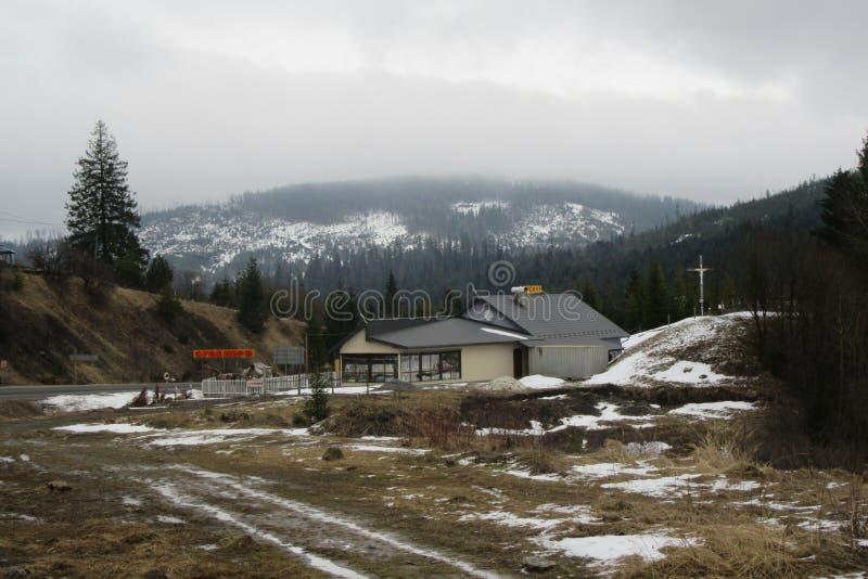 Mattina nebbiosa nelle montagne carpatiche ucraine 2018 fotografia stock