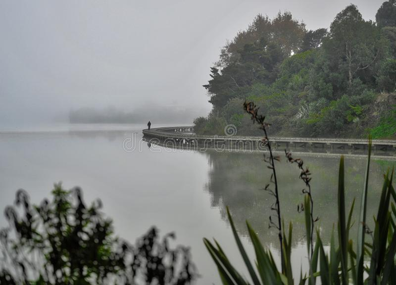 Mattina nebbiosa sopra il lago immagini stock