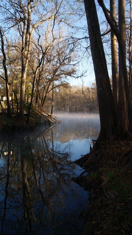 Mattina nebbiosa sopra l'acqua nella foresta di Ginnie Springs, Florida fotografie stock libere da diritti