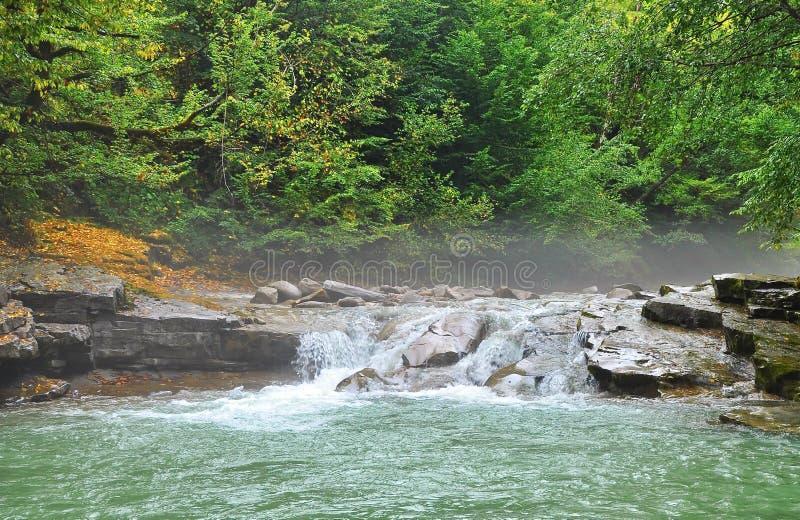 Mattina nebbiosa sul fiume della montagna fotografie stock libere da diritti