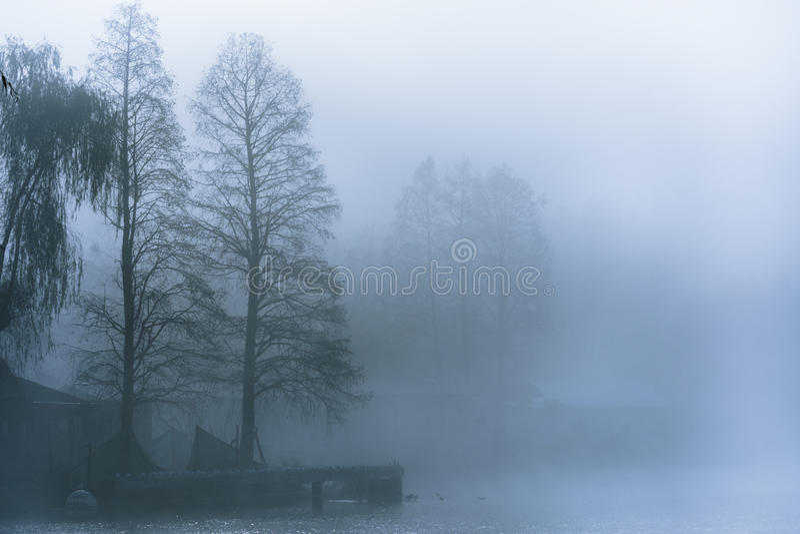 Mattina nebbiosa sul lago immagini stock