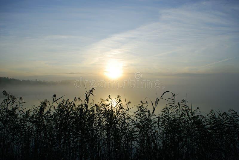 Mattina nebbiosa sul lago fotografia stock