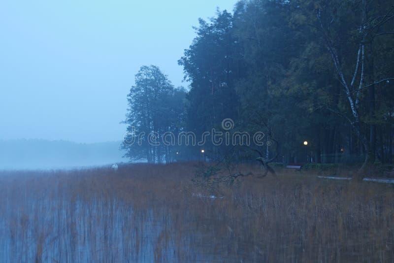 Mattina nebbiosa sul lago Strada del deserto vicino al lago fotografia stock
