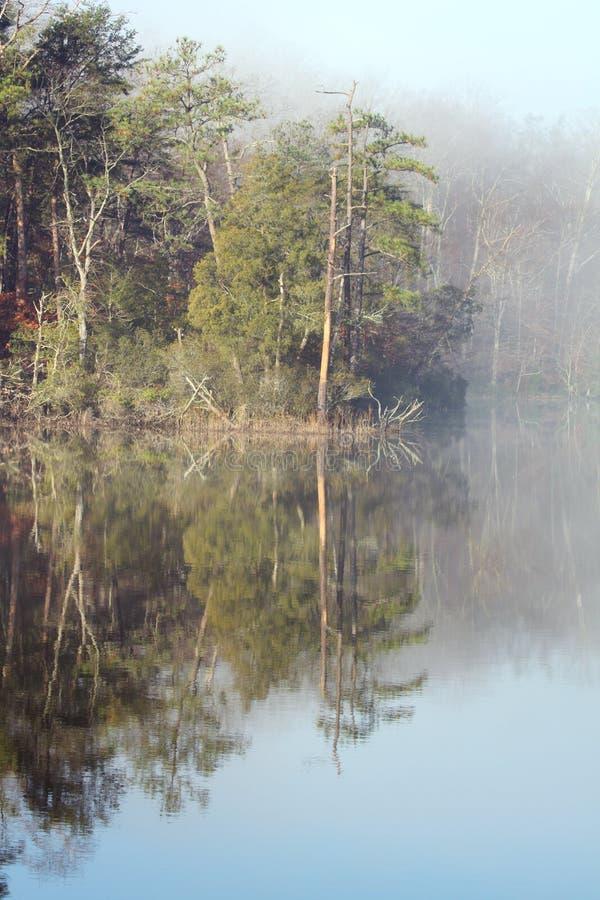 Mattina nebbiosa sull'insenatura dell'istituto universitario nella Virginia fotografie stock libere da diritti