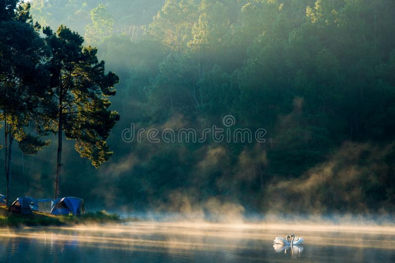 Mattina nel lago pang Ung, provincia di Pang Ung Mae Hong Son fotografie stock