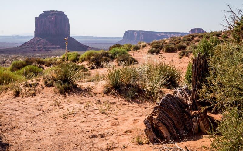 Mattina nella valle del monumento Tende turistiche in mezzo delle rocce di sbriciolatura dell'Arizona fotografia stock libera da diritti