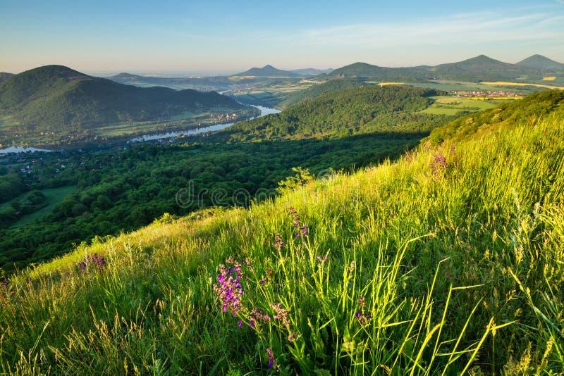 Mattina nelle montagne centrali ceche immagine stock