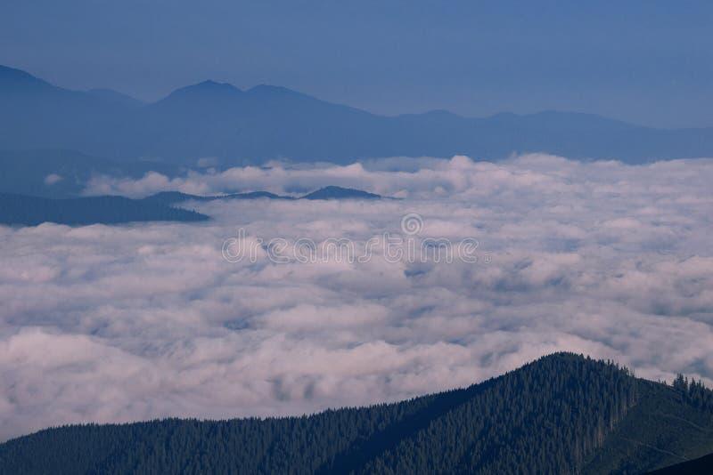Mattina nelle montagne sopra le nuvole bianche immagine stock