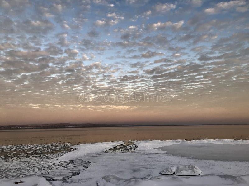 Mattina rosa di inverno fotografie stock