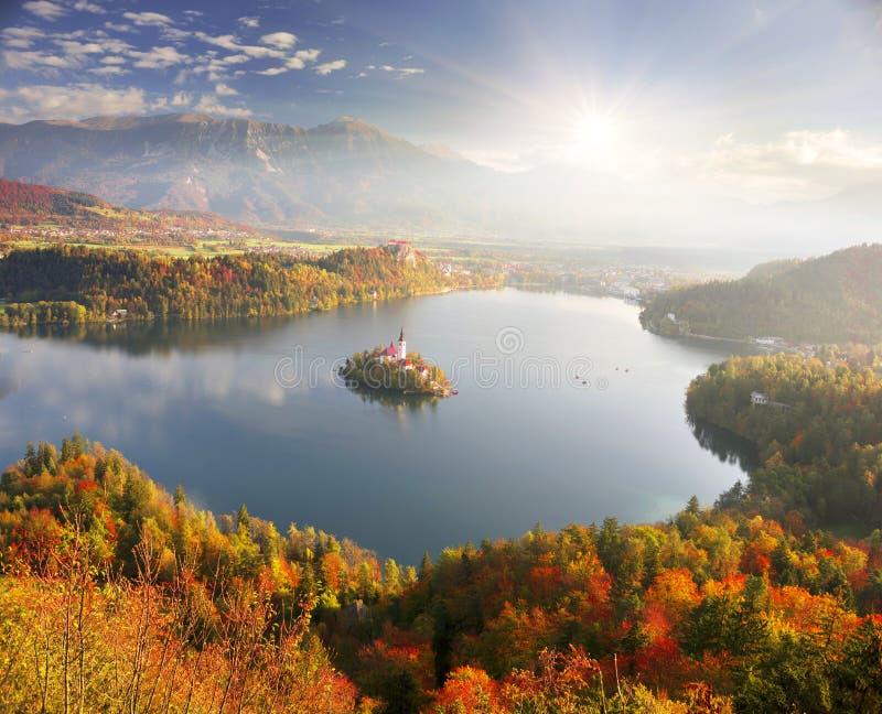 Mattina sul lago sanguinato fotografia stock