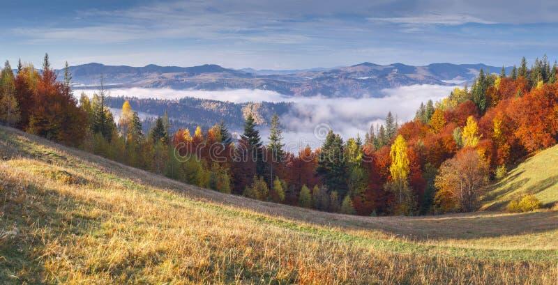 Mattina variopinta di autunno in montagne. immagine stock