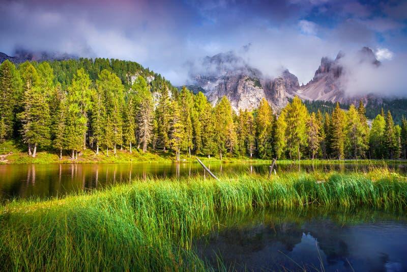 Mattina variopinta di estate sul lago Antorno immagini stock