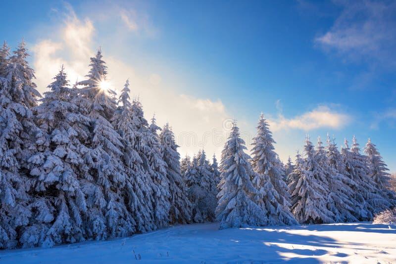 Mattina variopinta di inverno nelle montagne ad alba immagini stock