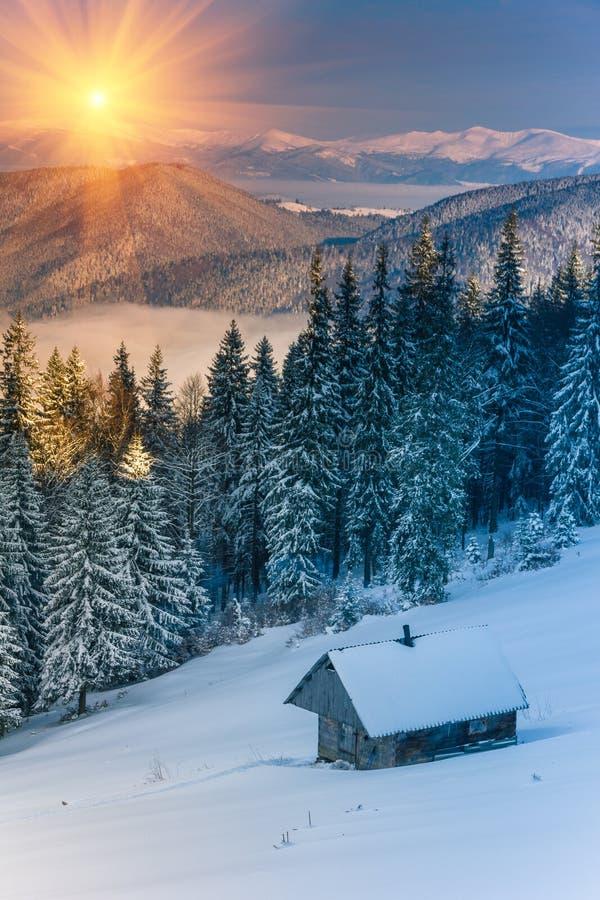 Mattina variopinta di inverno nelle montagne ad alba fotografie stock libere da diritti