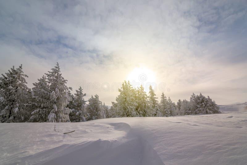 Mattina variopinta di inverno nelle montagne ad alba fotografia stock libera da diritti