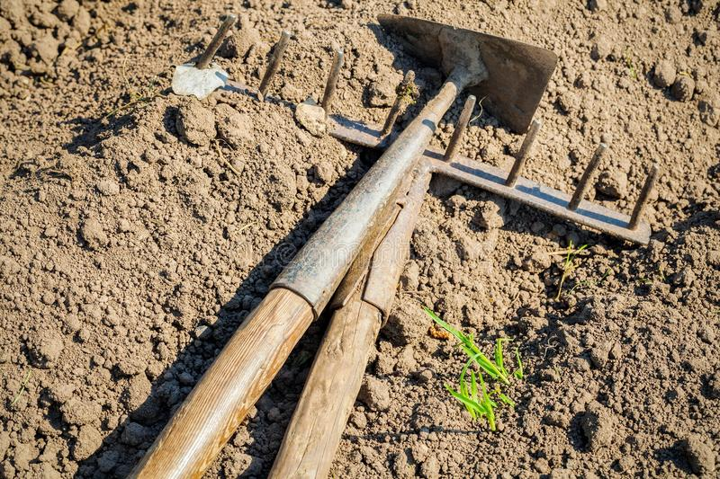 Mattock and rake on soil royalty free stock photos