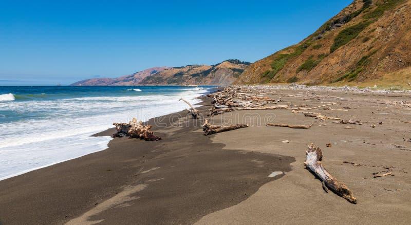 Mattole plaża z ocean fala i udziałami driftwood zdjęcie royalty free