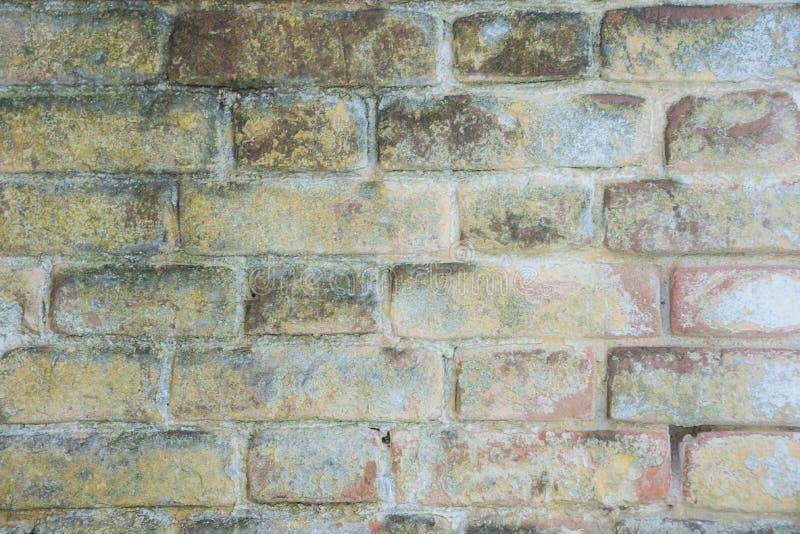 Mattone colorato struttura, per fondo immagini stock