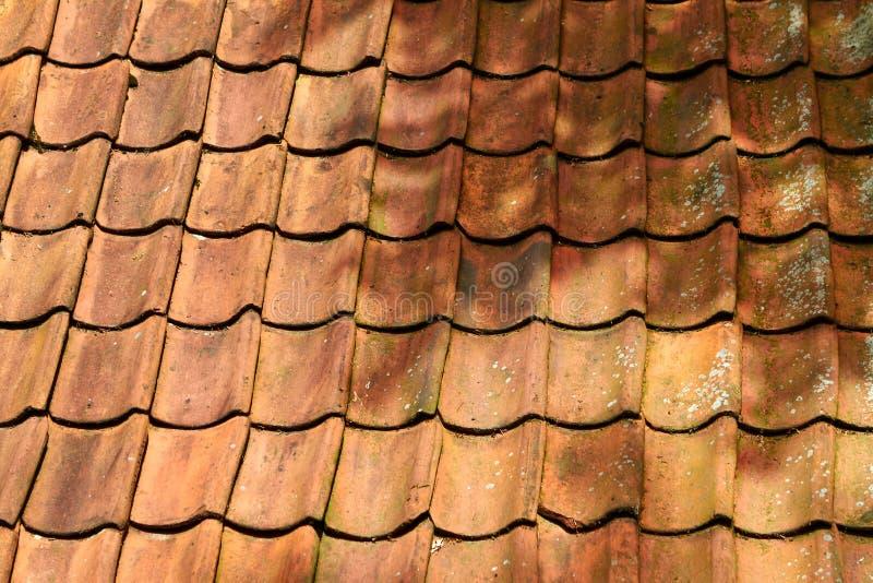 Mattonelle arancio dell'argilla sul tetto I Paesi Bassi, luglio fotografia stock libera da diritti