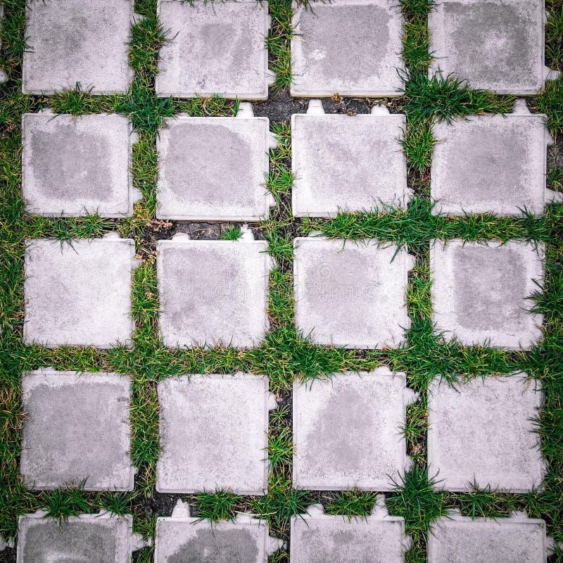 mattonelle del quadrato di vista superiore con erba verde immagini stock libere da diritti