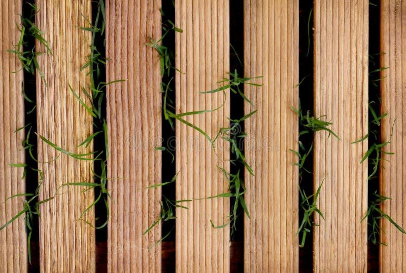 Mattonelle di legno su erba verde per l'opera d'arte di progettazione e del fondo immagini stock libere da diritti