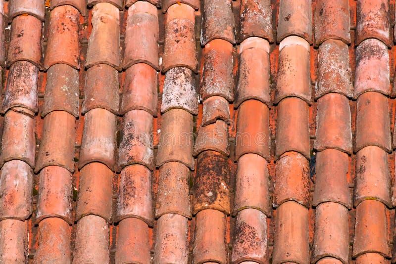 Mattonelle di tetto di una casa italiana a Bologna immagini stock libere da diritti