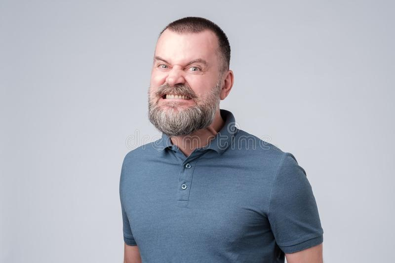 Mature man angry and aggressively bares his teeth. Mature bearded man in blue shirt angry and aggressively bares his teeth. Studio shot. Negative facial emotion royalty free stock photography