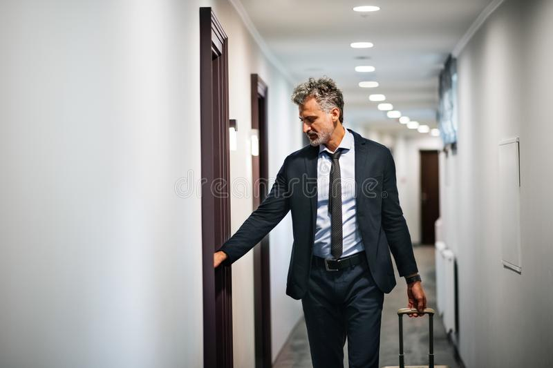 Mature businessman with luggage in a hotel corridor. Mature businessman with luggage in a hotel corridor, opening the door of the room. Handsome man pulling stock photos