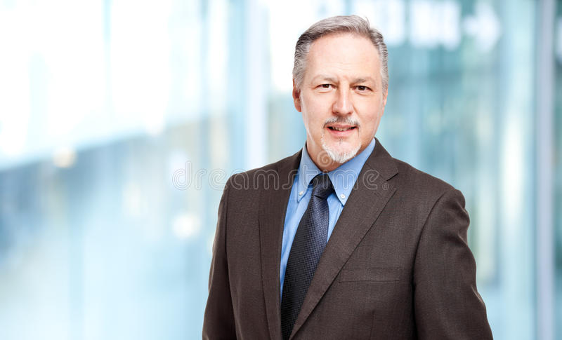 Mature businessman portrait royalty free stock photos