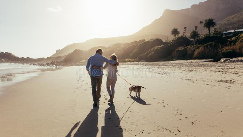 Mature couple strolling along the beach with dog royalty free stock photos