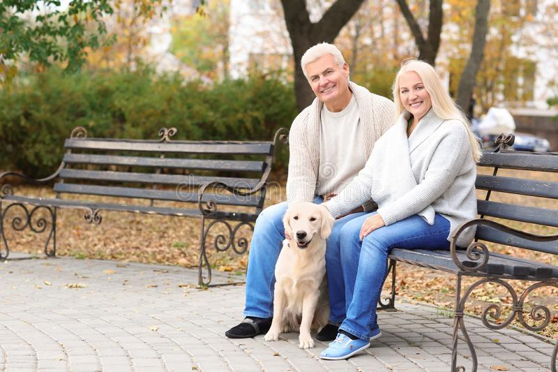 Mature couple with their dog resting royalty free stock image