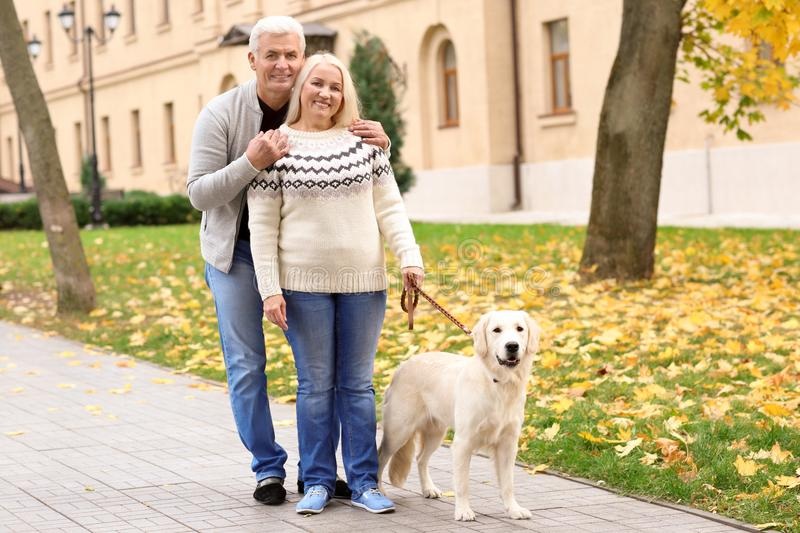 Mature couple walking their dog royalty free stock photography