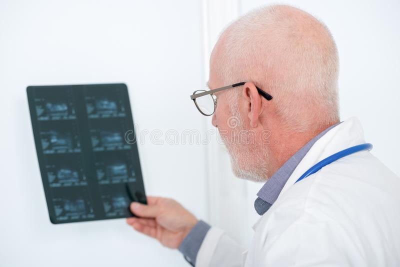 Mature doctor looking at x-ray in an office royalty free stock image