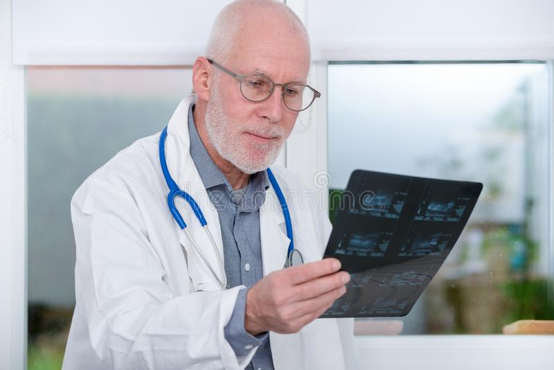 Mature Doctor looking at an x-ray in office stock image