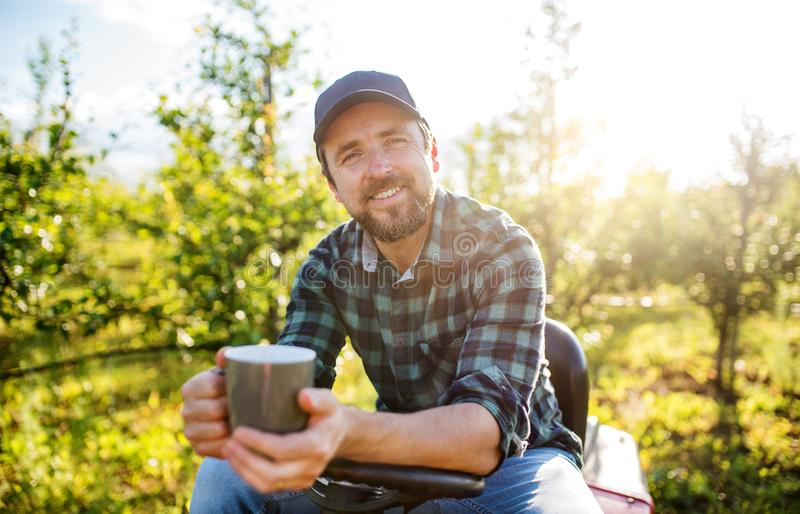 A mature farmer with cup of coffee outdoors in orchard, resting. stock image
