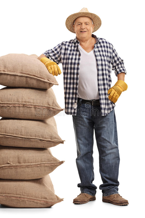 Mature farmer leaning on a pile of burlap sacks. Full length portrait of a mature farmer leaning on a pile of burlap sacks isolated on white background stock photo