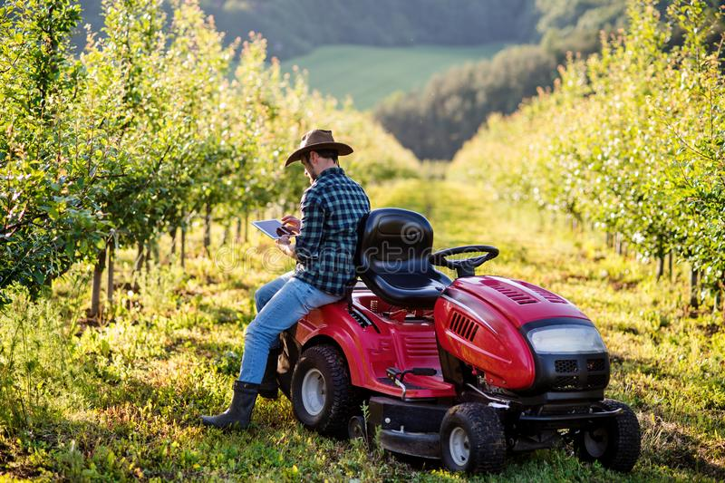 A mature farmer with tablet standing by mini tractor outdoors in orchard. stock images