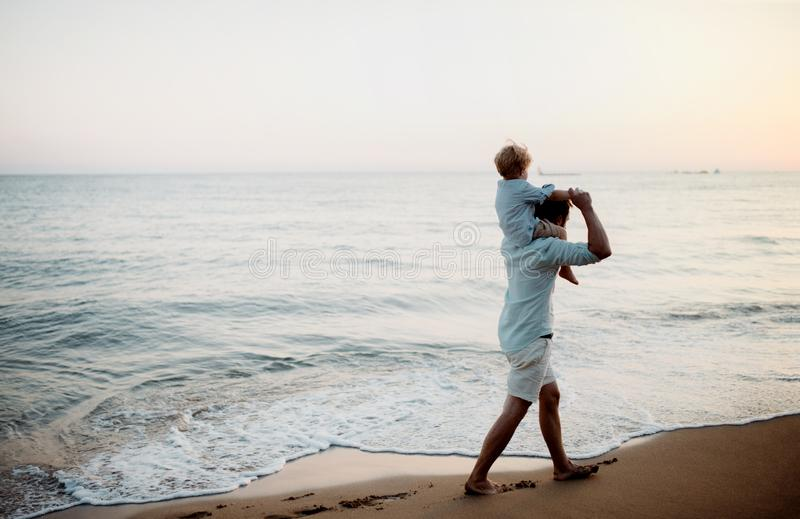 Father with a toddler boy walking on beach on summer holiday, having fun. Mature father with a toddler boy walking on beach on summer holiday, having fun stock photo