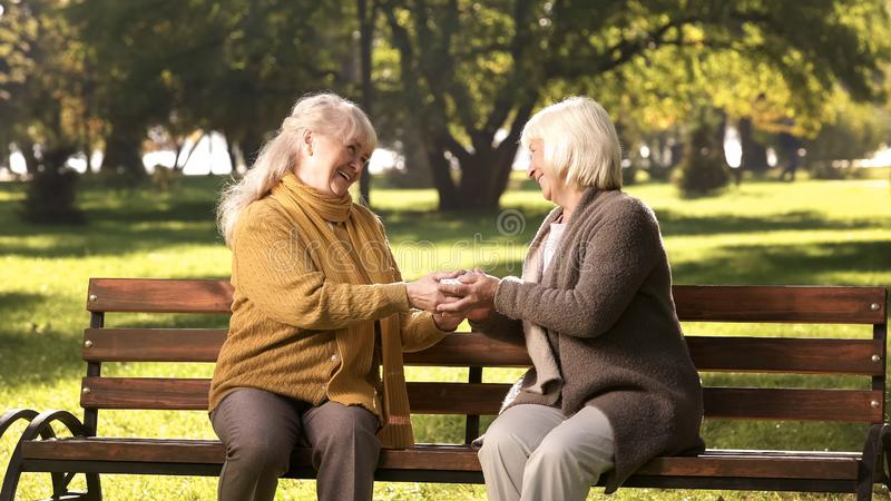 Mature lady congratulating friend with birthday, giving present on bench in park stock images