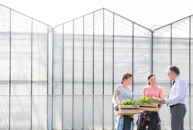 Mature male biochemist discussing with female coworkers against greenhouse stock photos