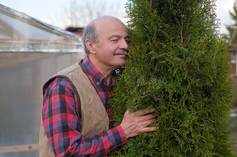 Mature man being proud of his garden hugging his favourite tree royalty free stock photos