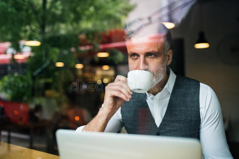 Mature man with coffee at the table in a cafe, using laptop. stock image