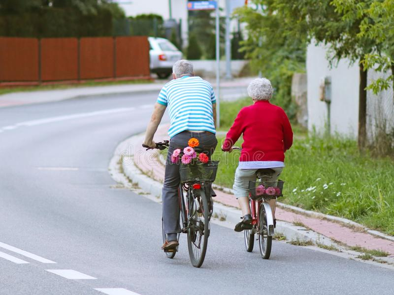 Mature man and woman rides a bicycle among the greens. A healthy and active part of life. Ecological transport for the population. Free time for retirement royalty free stock image