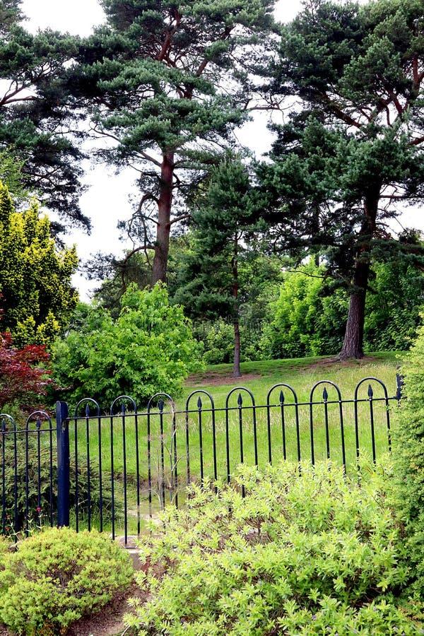 Fenced park vegetation royalty free stock photo
